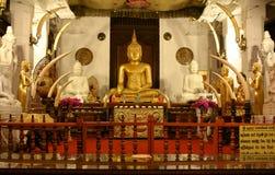 神圣的牙遗物,斯里兰卡寺庙  免版税库存图片