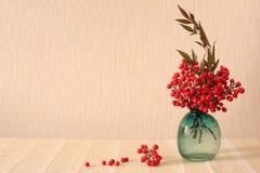 神圣的竹子红色莓果  (文本的地方) 免版税库存图片