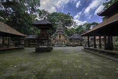 神圣的猴子森林寺庙在Ubud -巴厘岛-印度尼西亚 免版税图库摄影