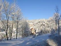 神奇冬天风景庄严山在冬天 不可思议的冬天积雪的树 在山的冬天路 在滑稽 图库摄影