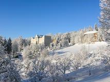 神奇冬天风景庄严山在冬天 不可思议的冬天积雪的树 在山的冬天路 在滑稽 免版税库存图片