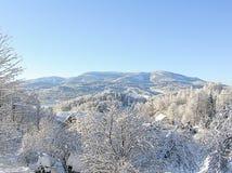 神奇冬天风景庄严山在冬天 不可思议的冬天积雪的树 在山的冬天路 在滑稽 免版税图库摄影