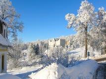 神奇冬天风景庄严山在冬天 不可思议的冬天积雪的树 在山的冬天路 在滑稽 免版税库存照片