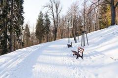神奇冬天风景庄严山在冬天 不可思议的冬天积雪的树 在山的冬天路 Dramat 免版税图库摄影