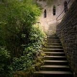 神奇楼梯照片 免版税库存照片