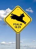 神的标志,飞跃羊羔赞美诗18:29 免版税库存图片