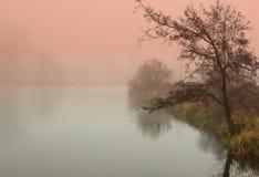神秘的日出在池塘的秋天 免版税图库摄影