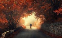 神秘的有一个人的剪影的秋天红色森林 免版税库存照片