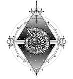 神秘的标志生活的起源:壳,神圣的几何 皇族释放例证