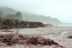 神秘的海滩新西兰 免版税库存照片