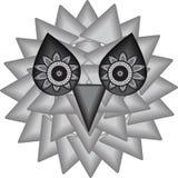 神秘的猫头鹰的背景 免版税库存照片