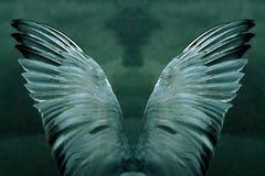 神秘的翼 库存照片