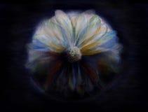 神秘的花绘画 向量例证