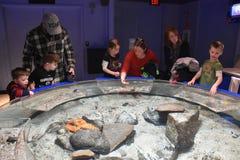 神秘的水族馆在康涅狄格 图库摄影