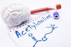 神经传送体乙酰胆碱 有血液的实验室试验管和人脑的模型近对题字Acetylcho 免版税库存图片