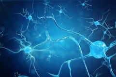 神经元细胞的概念性例证与发光的链接结的 送电子化学制品的突触和神经元细胞 免版税图库摄影
