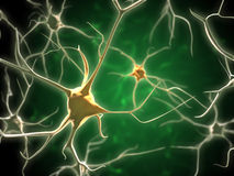 神经元 库存照片