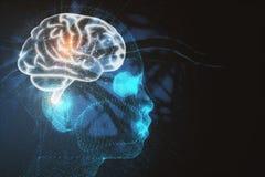神经系统和突发的灵感概念 免版税库存照片
