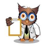 神色博士猫头鹰是这 图库摄影