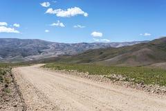 神鹰,塔夫拉达・德乌玛瓦卡, Jujuy,阿根廷 免版税库存照片
