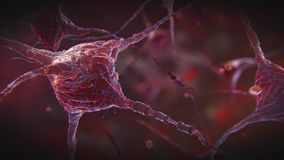 神经元冲动 库存例证