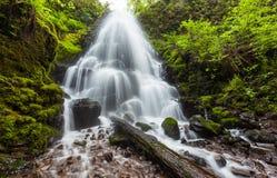 神仙在哥伦比亚河峡谷,俄勒冈跌倒 免版税库存图片