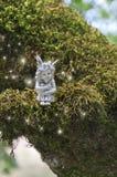 神仙坐与发光在她附近的光闪闪发光的生苔分支 免版税库存照片
