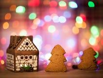 神仙的圣诞节房子蛋糕 免版税库存照片