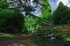 神仙的幽谷Sefton公园利物浦英国 免版税库存图片