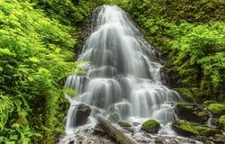 神仙的秋天,哥伦比亚峡谷 免版税库存图片