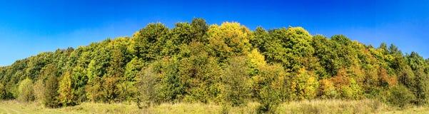神仙的金黄秋天 好的视图 免版税图库摄影