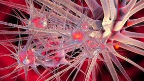 神经细胞的网络 免版税库存图片