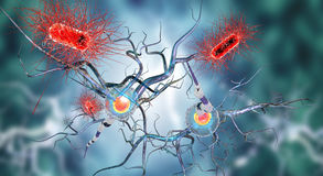 神经细胞 向量例证