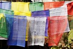 祷告旗子, Paro,不丹 免版税图库摄影