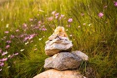 祷告石头 库存照片