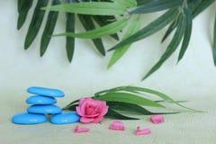 以禅宗与一朵桃红色花的生活时尚堆积的装饰小卵石在绿色和叶子背景 库存照片