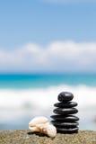 禅宗在海附近向jy扔石头在沙滩。 免版税库存照片