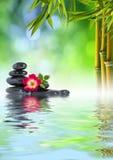 禅宗在水的石头,玫瑰色和竹子 免版税库存图片
