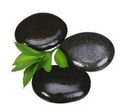 禅宗小卵石。温泉石头和在白色隔绝的绿色叶子 免版税库存图片