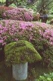 禅宗庭院片段 图库摄影