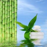 禅宗按摩石头和竹子在水中反射了 图库摄影