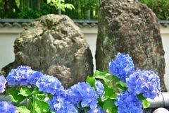 禅宗日本庭院,日本岩石和花  图库摄影