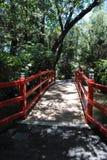 禅宗桥梁 免版税图库摄影