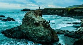 禅宗海滩 图库摄影