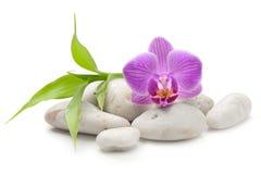 禅宗玄武岩石头、兰花和竹子 图库摄影