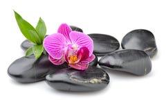 禅宗玄武岩石头、兰花和竹子 库存图片