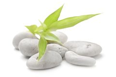 禅宗石头和竹子在白色 库存照片