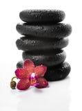 黑禅宗石头和红色兰花,兰花植物金字塔  免版税图库摄影