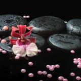 禅宗石头温泉静物画与下落的,红色兰花cambria 库存照片