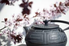 禅宗风水和凝思的茶时间 免版税库存照片